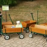 Children's wagon livery