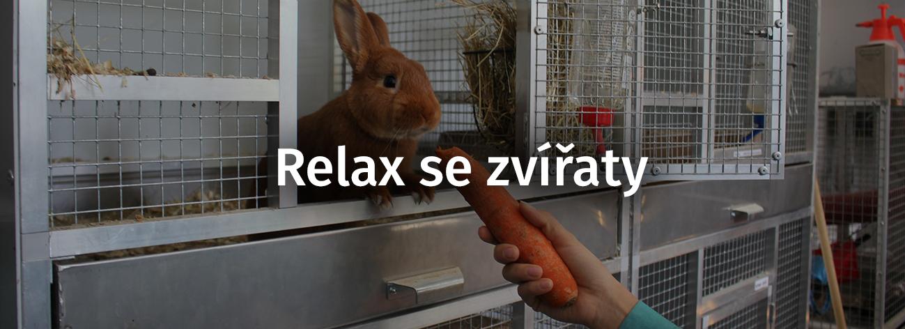 Relaxsezvířaty
