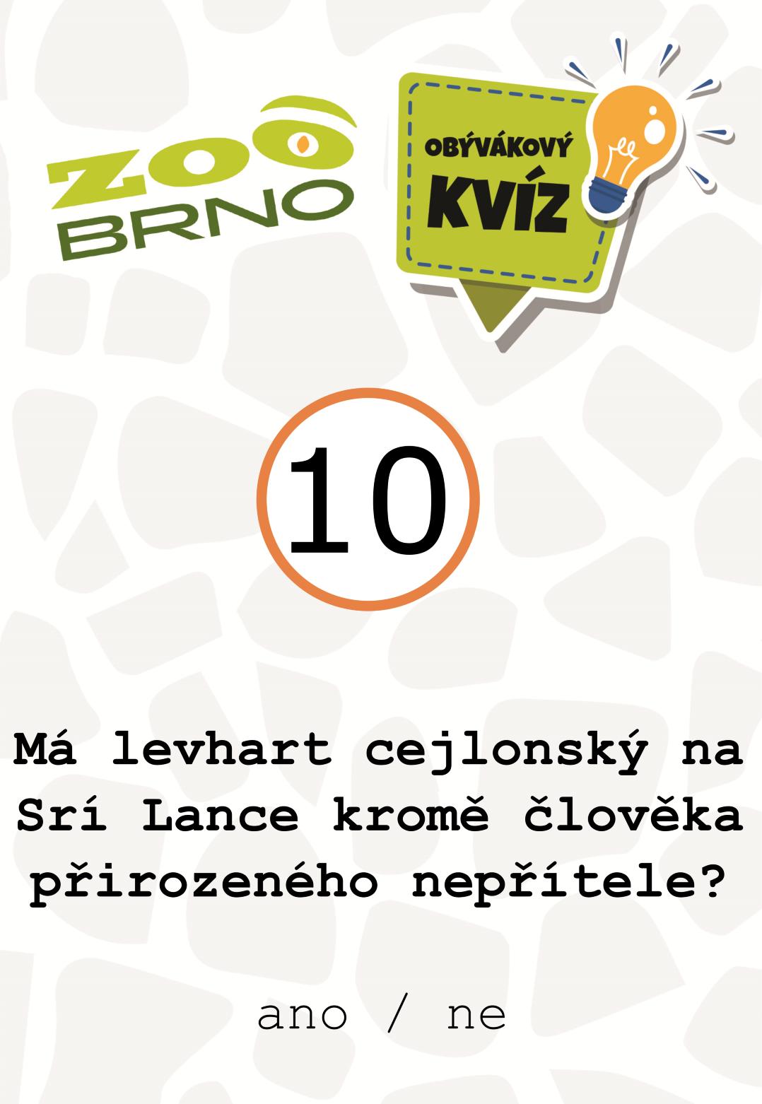 _otazka10_levhart