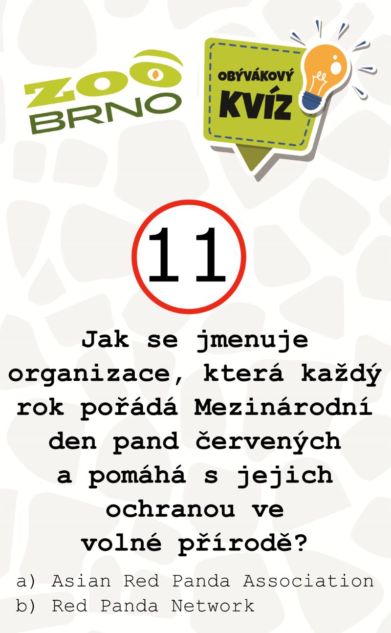 _otazka11_panda