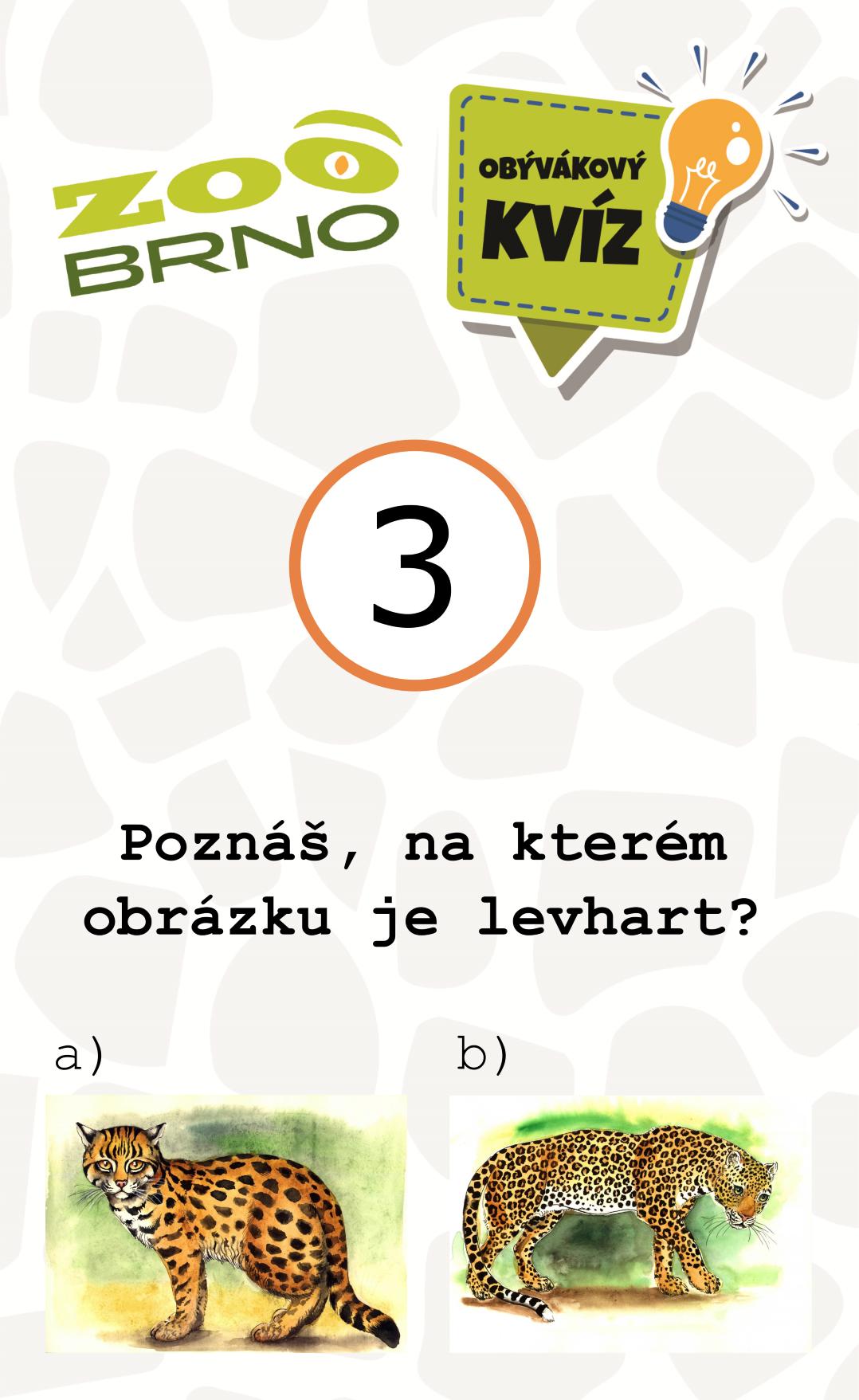 _otazka3_levhart