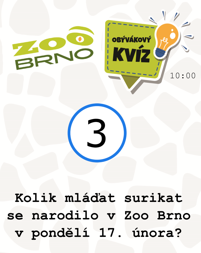 _otazka3_tapiriasurikaty
