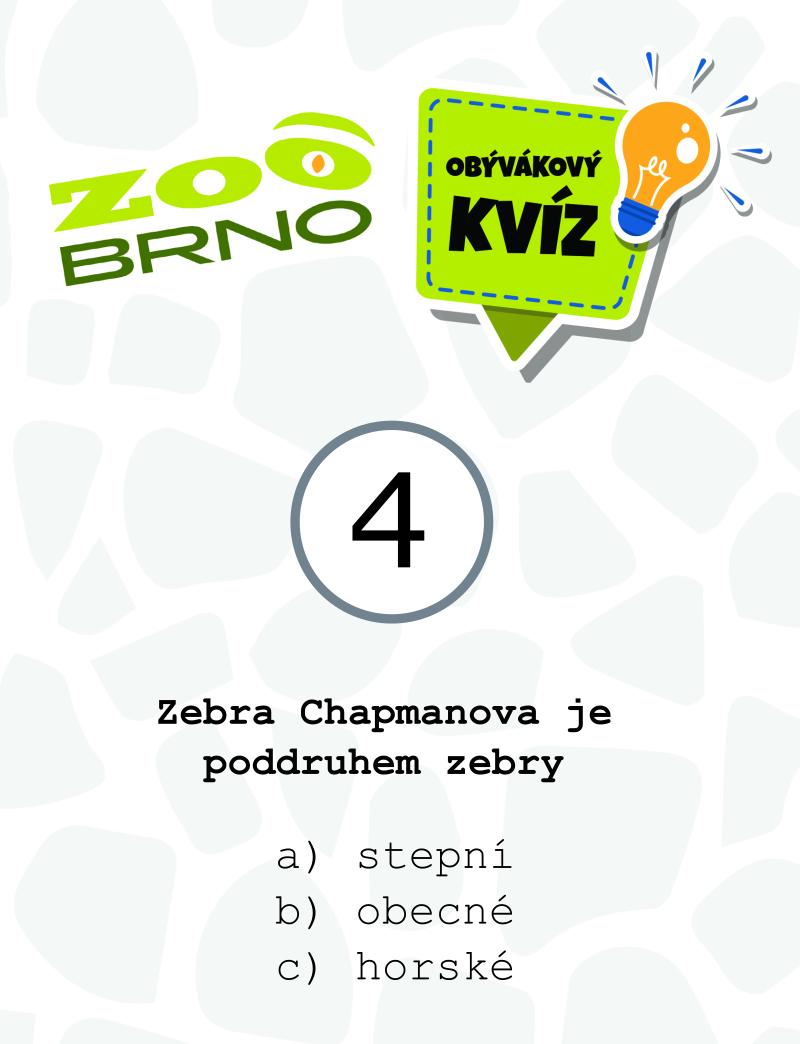 _otazka4_zebry