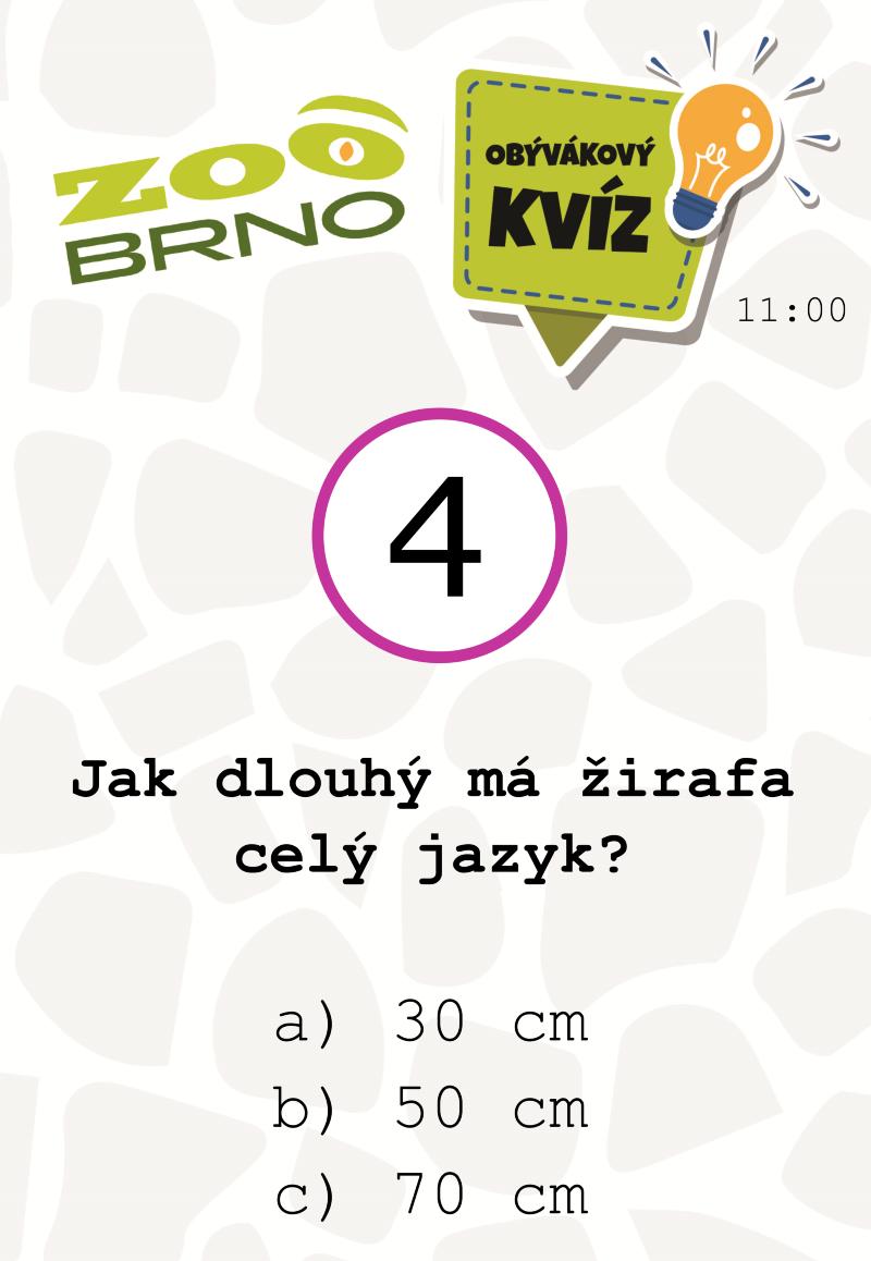 _otazka4_zirafyajerabi