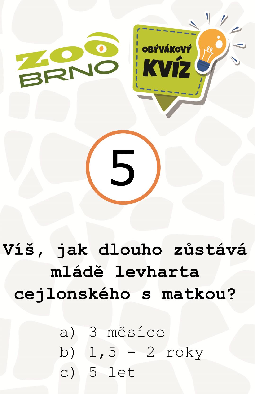 _otazka5_levhart