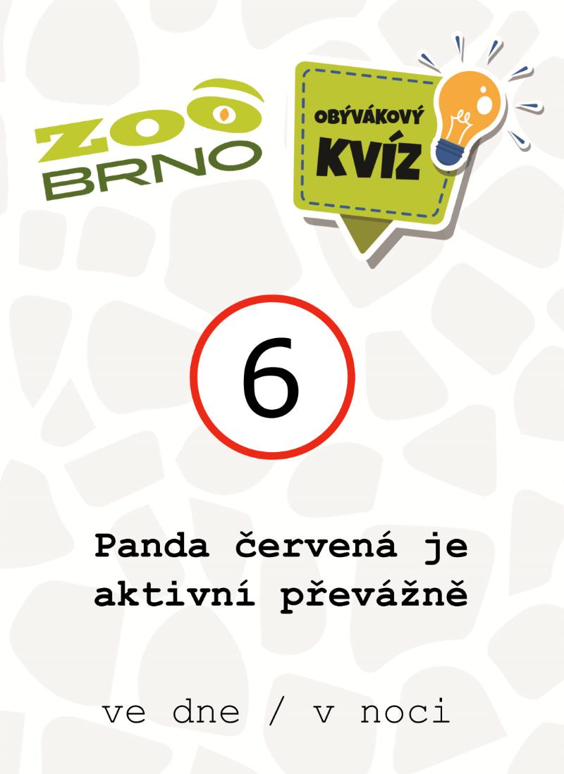 _otazka6_panda