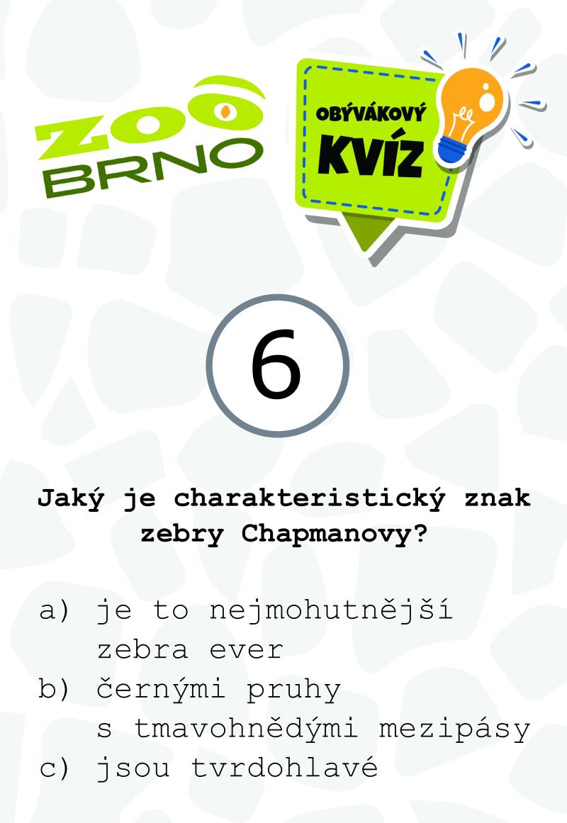 _otazka6_zebry
