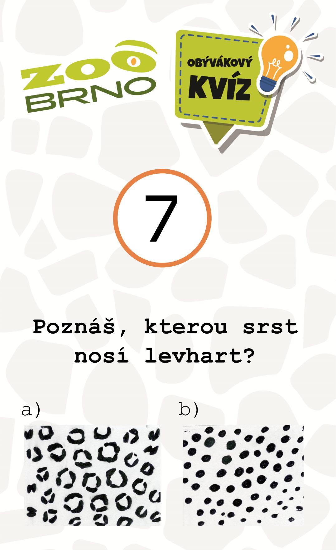 _otazka7_levhart
