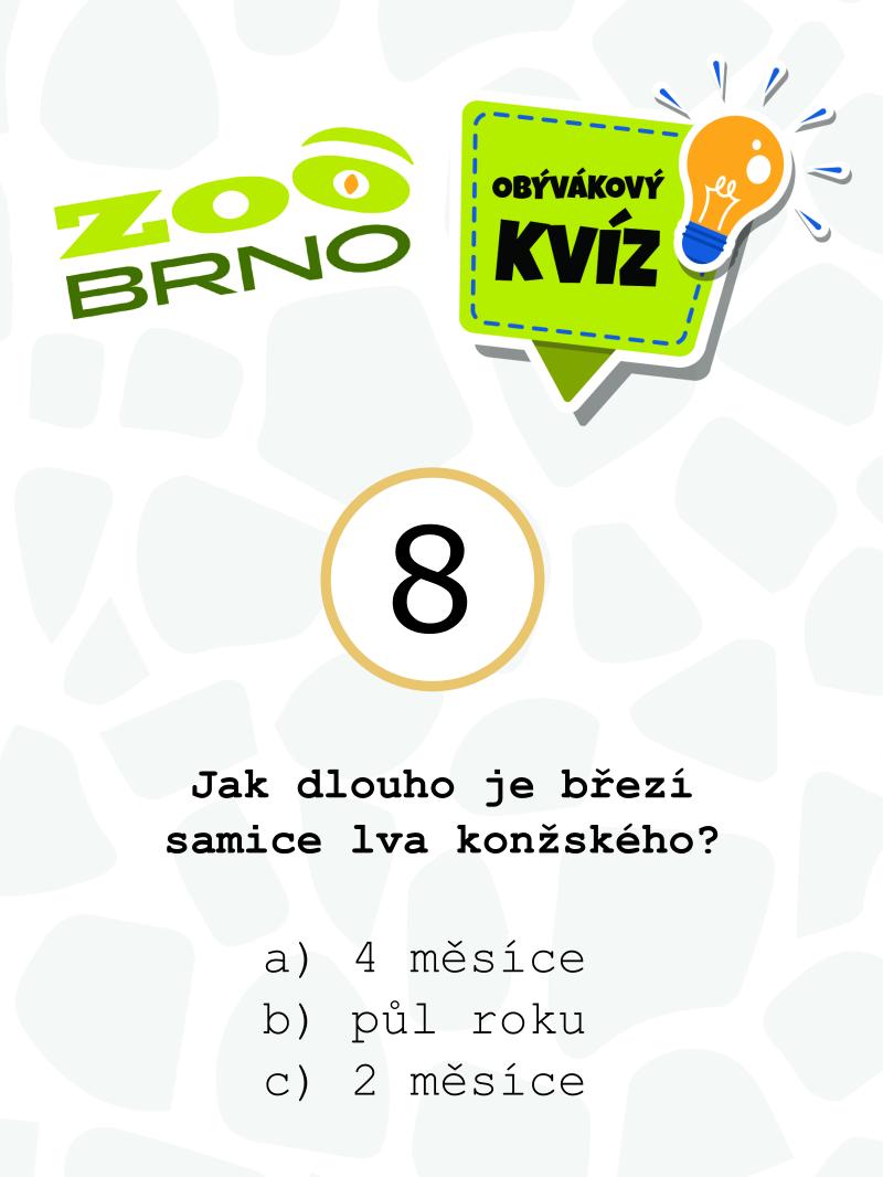 _otazka8_lvi