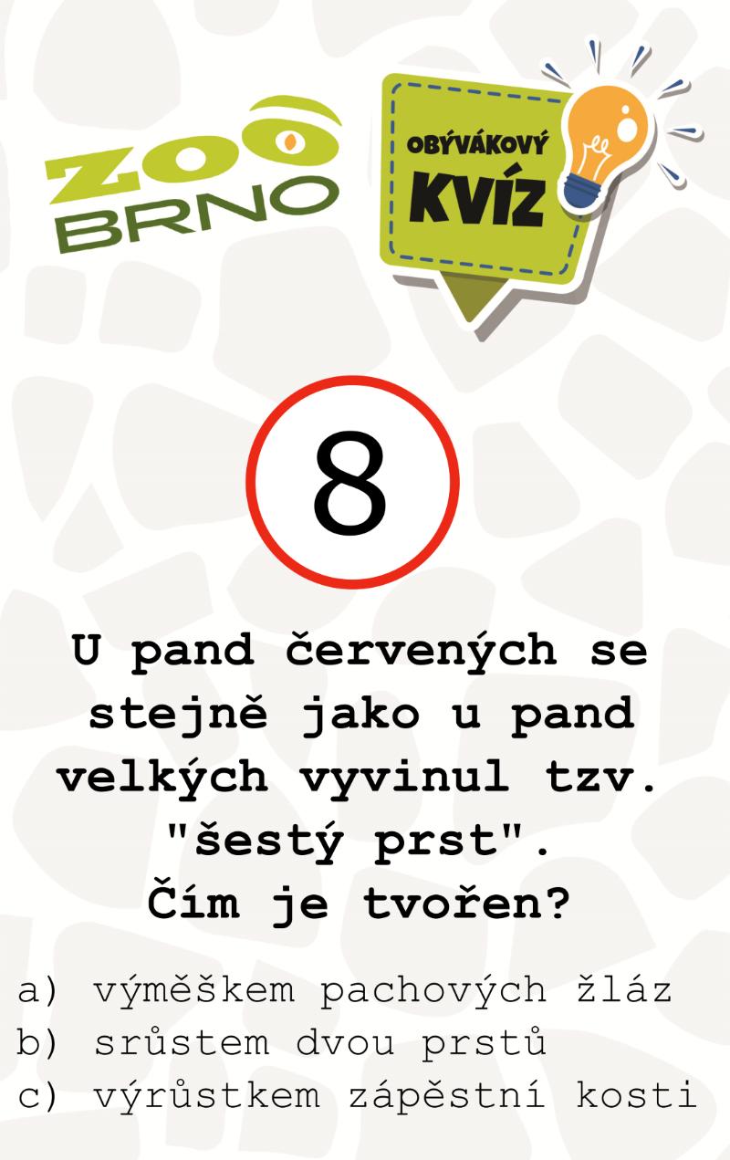 _otazka8_panda