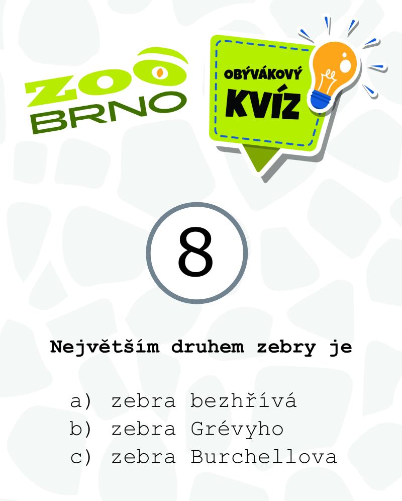 _otazka8_zebry