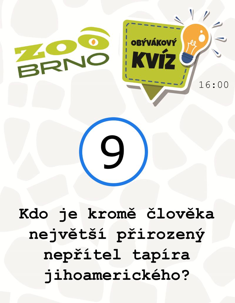 _otazka9_tapiriasurikaty