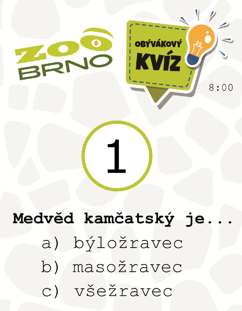 medvedi_otazka1