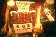 Tradiční východoasijská medicína používá kosti adalší části těla tygrů