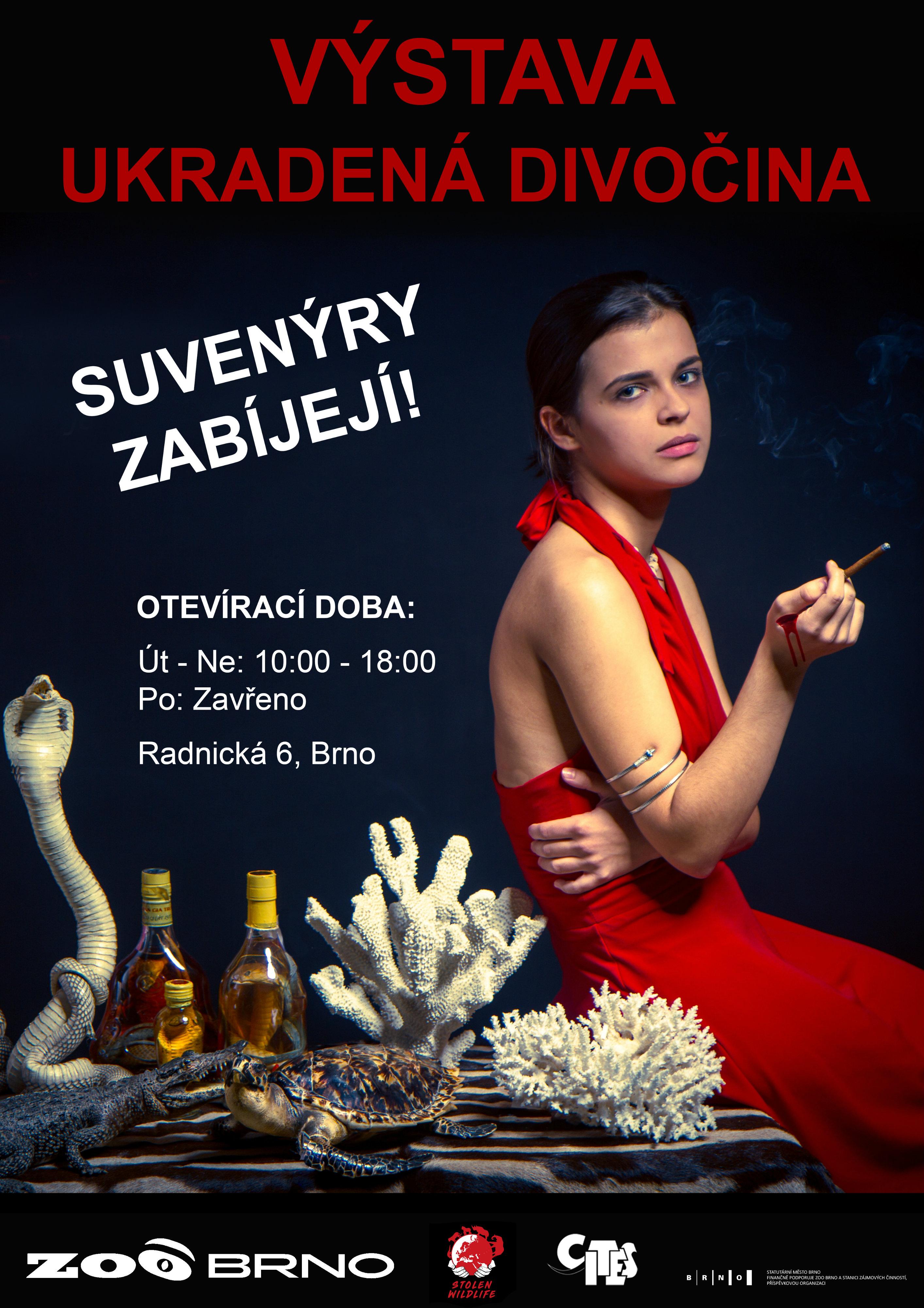 ukradenádivočinaplakát_mensi
