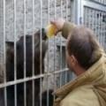 Medvědi mají rádi med