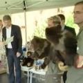 Křest medvíďat medvědů kamčatských