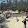 Vítáme jaro v brněnské zoo