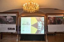 Vernisáž výstavy Lvi se vracejí v Urban centru 21. 6. 2016