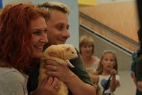 Brno Zoo Saves Turtles in OC Olympia Brno 11. 7. 2015