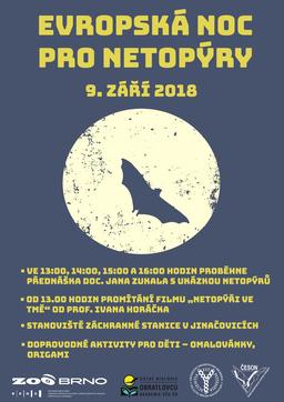 Evropská noc pro netopýry se po 17 letech vrací do Zoo Brno