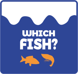 Which Fish?