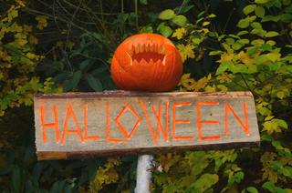 Halloween v Zoo Brno