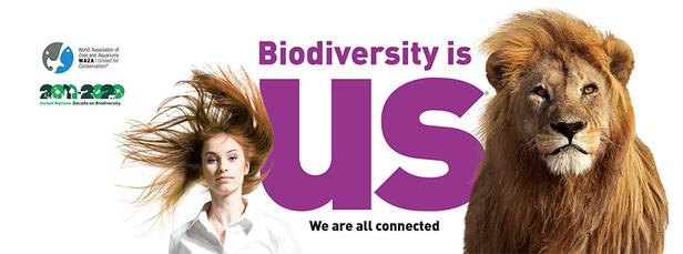 Biodiversity is us!